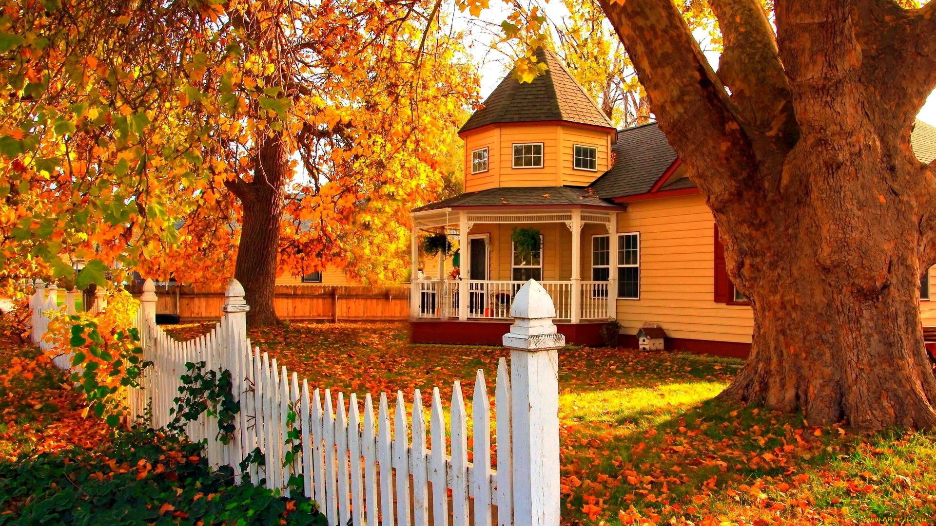 картинки осень на загородном доме тоненькой